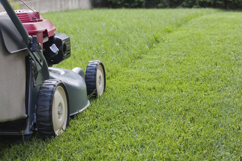 grass-cutting-aredireng